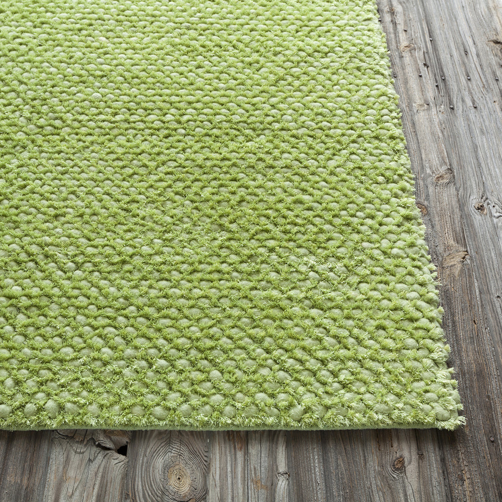 Strata Collection Hand-Woven Area Rug in Green design by Chandra rugs
