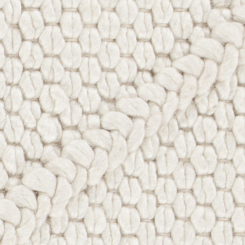 Sujan Collection Hand-Woven Area Rug in White design by Chandra rugs