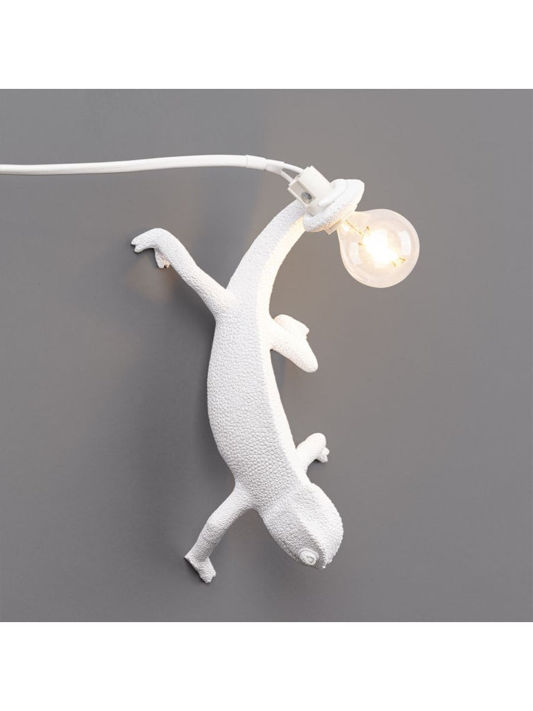 Chameleon Lamp Going Down