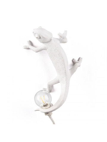 Chameleon Lamp Going Up