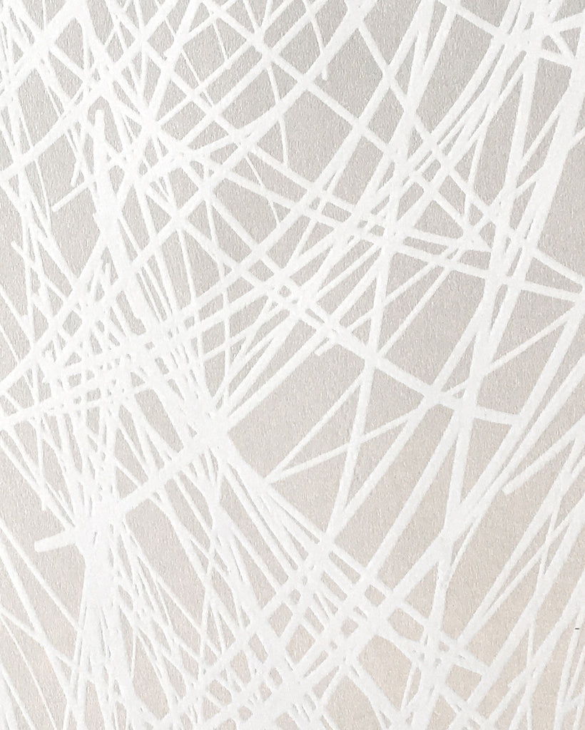 Shag Wallpaper in Ice design by Jill Malek