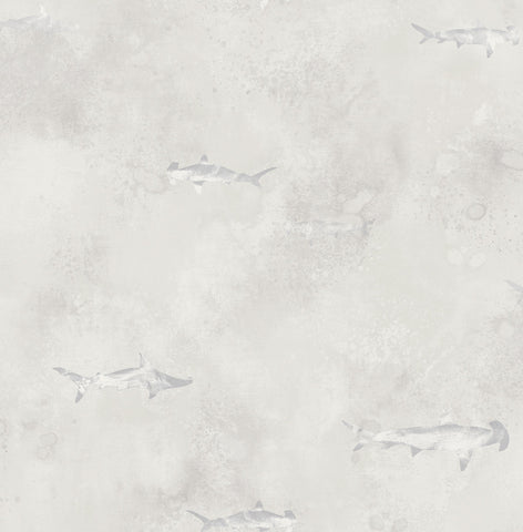 Sharks Wallpaper in Silver, Cream, and Grey from the Aerial Collection by Mayflower Wallpaper