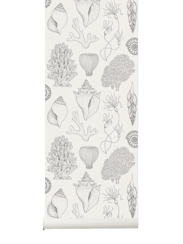 Sample Shells Wallpaper in Off-White by Katie Scott for Ferm Living