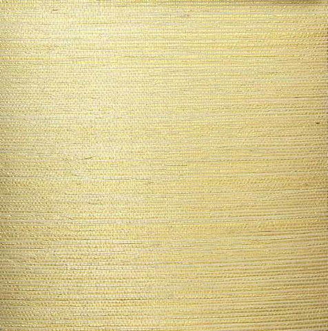 Sisal Wallpaper in Ivory and Gold from the Winds of the Asian Pacific Collection by Burke Decor