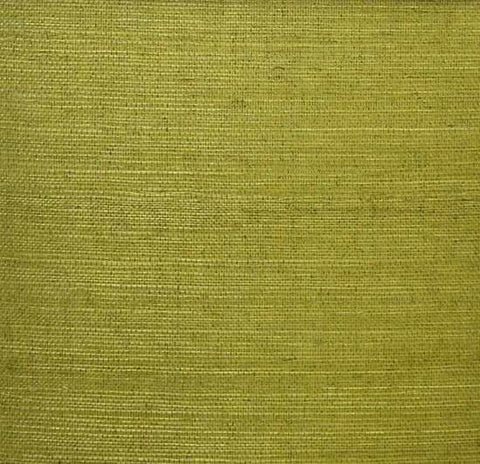 Sisal Wallpaper in Moss Green from the Winds of the Asian Pacific Collection by Burke Decor