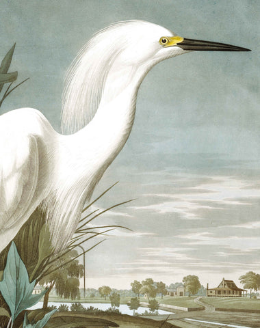 Snowy Heron 009 Wallpaper Panel by KEK Amsterdam