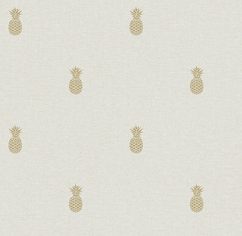 Southern Charm Beige Pineapple Wallpaper from the Seaside Living Collection by Brewster Home Fashions