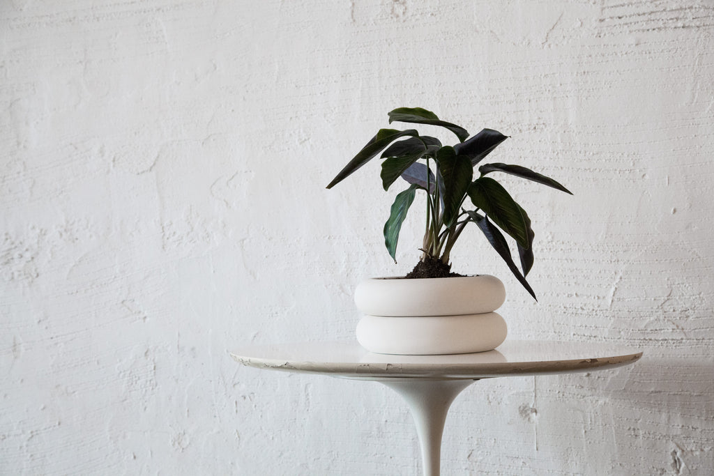 Short Stacking Planter design by Areaware