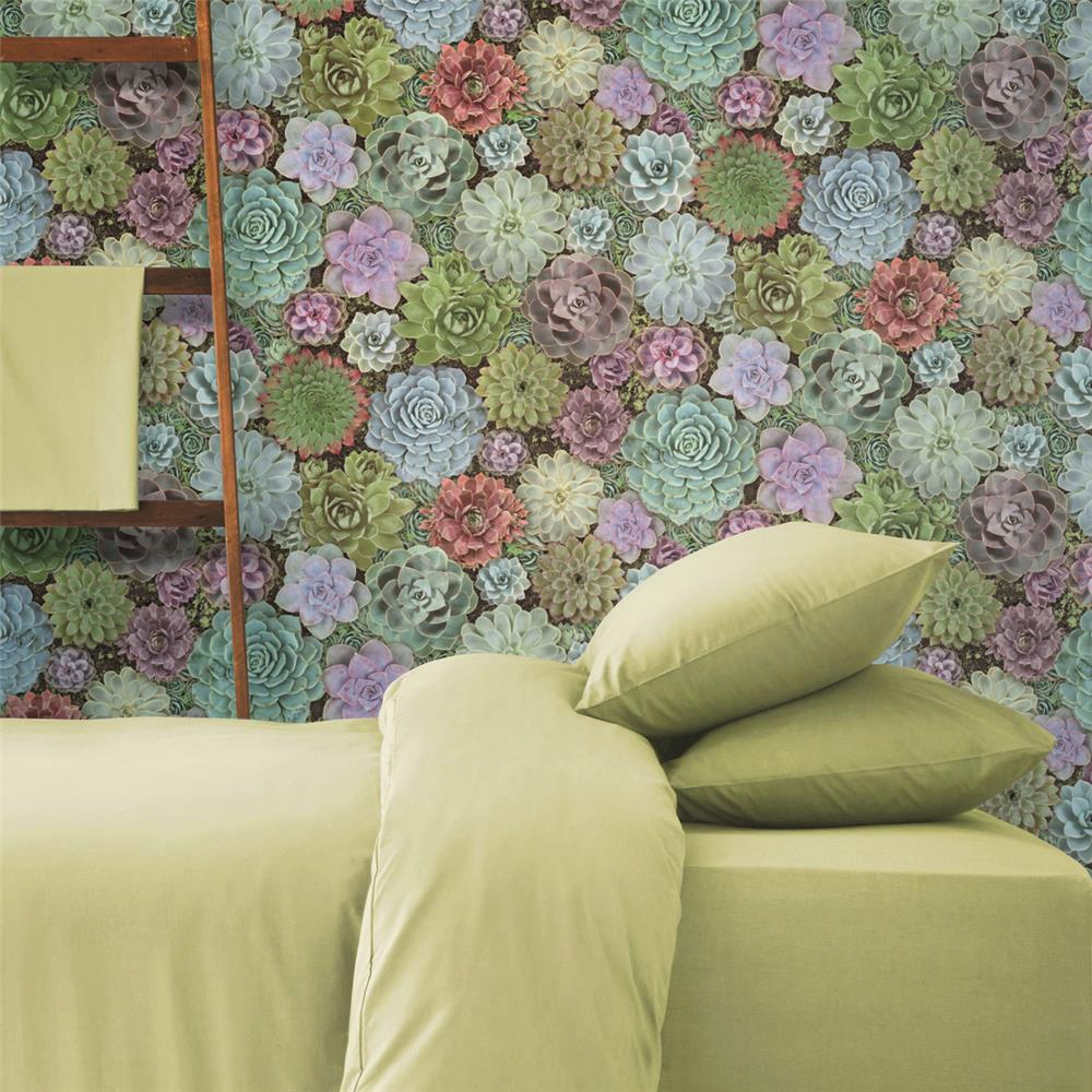 Succulents Peel & Stick Wallpaper by RoomMates for York Wallcoverings