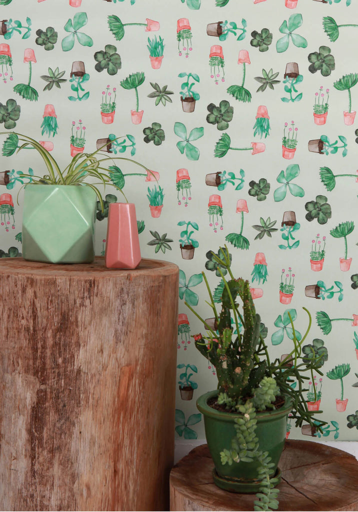 Succulents Wallpaper from the Love Mae Collection by Milton & King