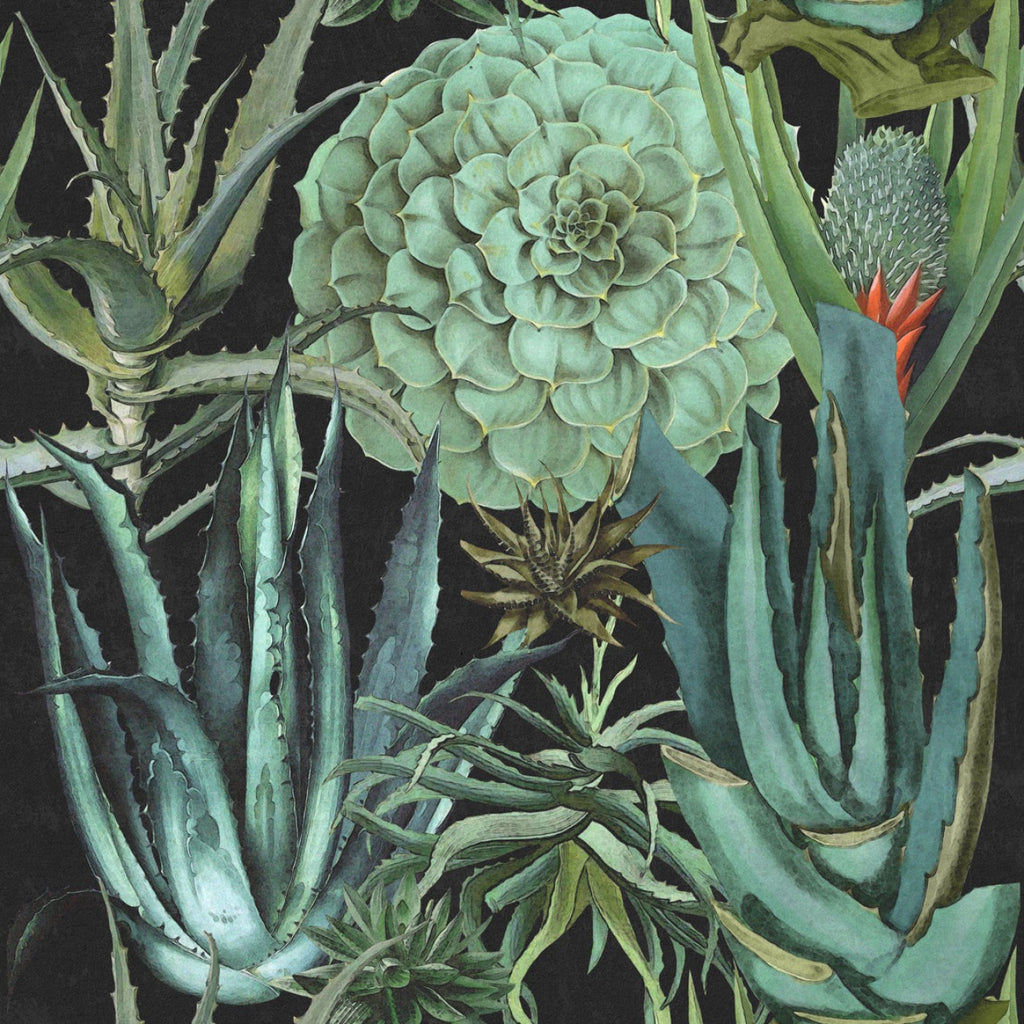 Sample Succulents Wallpaper in Anthracite and Green from the Rediscovered Paradise Collection by Mind the Gap