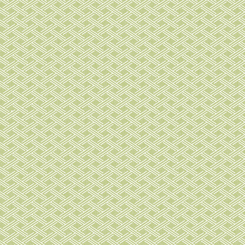 Sweetgrass Green Trellis Wallpaper from the Seaside Living Collection by Brewster Home Fashions