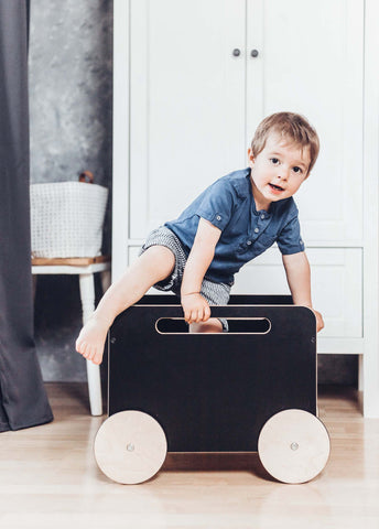 Toy Chest on Wheels in Various Colors