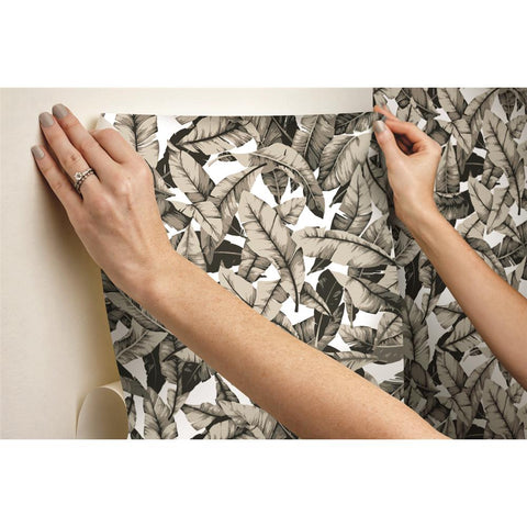 Tan Palm Peel & Stick Wallpaper by RoomMates for York Wallcoverings