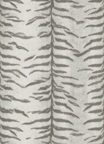 Tiger Pattern Wallpaper in Grey design by BD Wall
