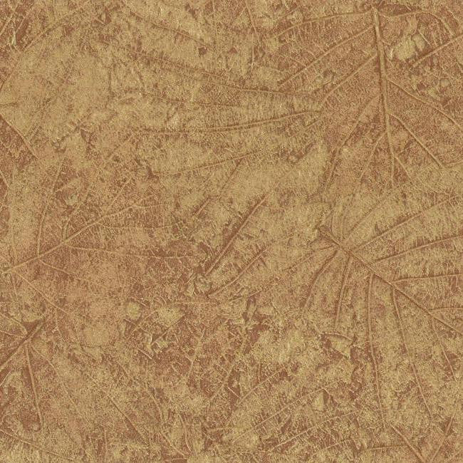 Tossed Leaves Wallpaper in Brown and Beige design by York Wallcoverings