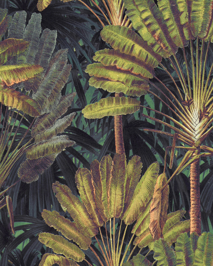 Sample Traveller's Palm Wallpaper in Sunset from the Wallpaper Compendium Collection by Mind the Gap
