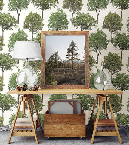 Tree Tops Green Photographic Wallpaper from the Essentials Collection by Brewster Home Fashions