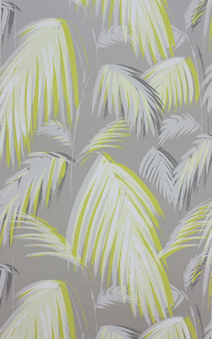 Tropicana Wallpaper in Metallic Silver by Matthew Williamson for Osborne & Little