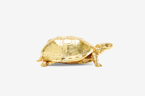 Reality Box Turtle Box in Gold design by Areaware