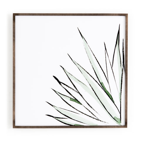 Agave Crop by Jess Engle Wall Art design by BD Studio