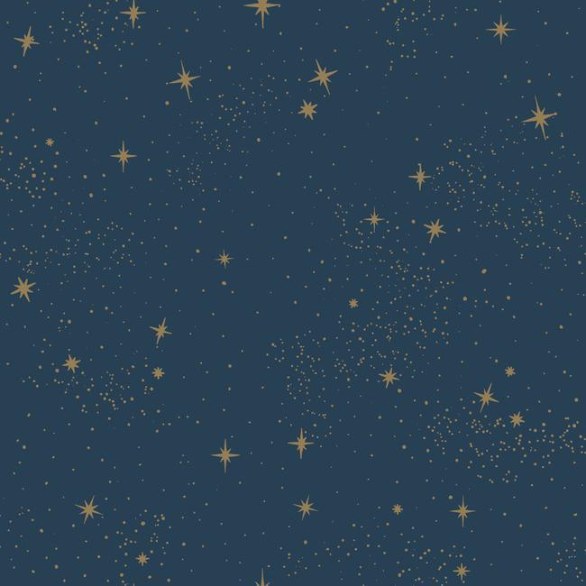 Upon A Star Peel & Stick Wallpaper in Navy by RoomMates for York Wallcoverings