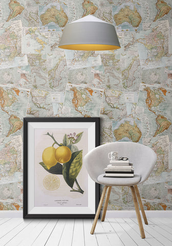 Vintage French Maps Boutique Faux Wallpaper design by Milton & King