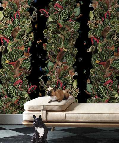 Viva Tropicana Wallpaper (Two Rolls) in Night from the Kingdom Home Collection by Milton & King