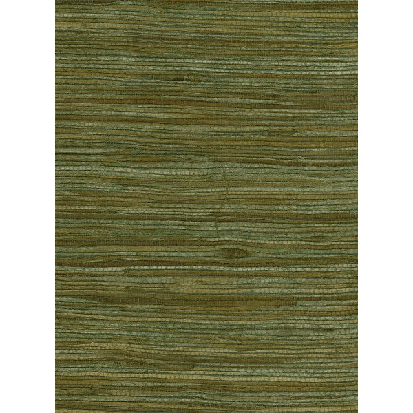 Sample Water Hyacinth Grasscloth Wallpaper in Greens and Tan from the Natural Resource Collection by Seabrook Wallcoverings
