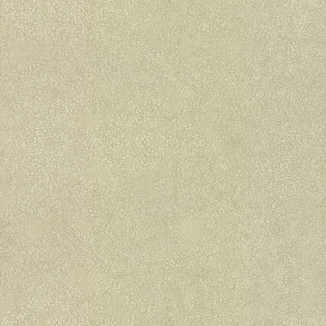 Sample Weathered Wallpaper in Cream by Antonina Vella for York Wallcoverings