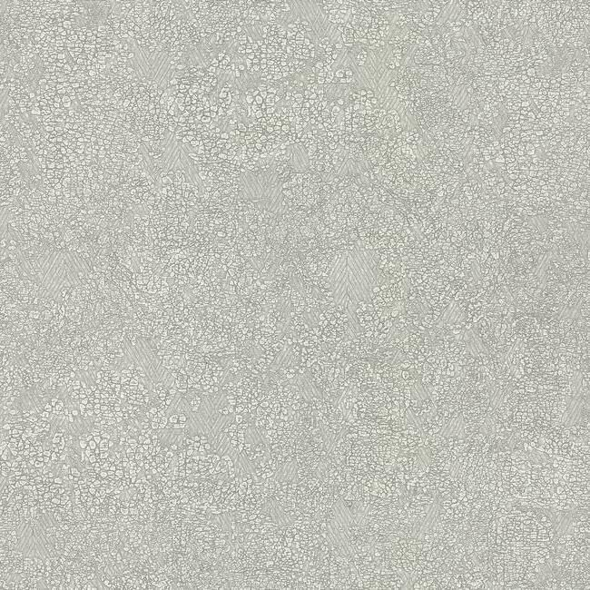 Sample Weathered Wallpaper in Light Grey by Antonina Vella for York Wallcoverings