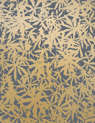 Sample Wild Thing Wallpaper in Gold on Charcoal design by Juju