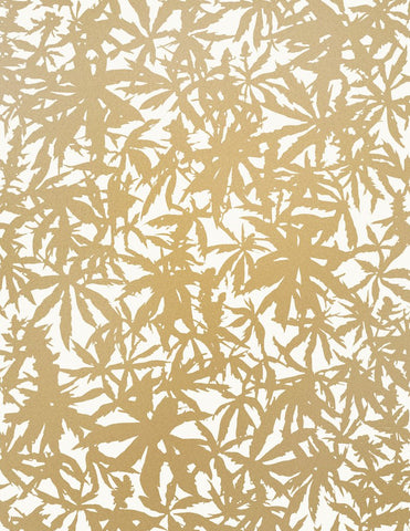 Wild Thing Wallpaper in Gold on Cream design by Juju