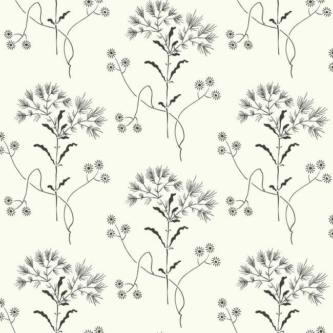 Sample Wildflower Wallpaper in Black and White from Magnolia Home Vol. 2 by Joanna Gaines