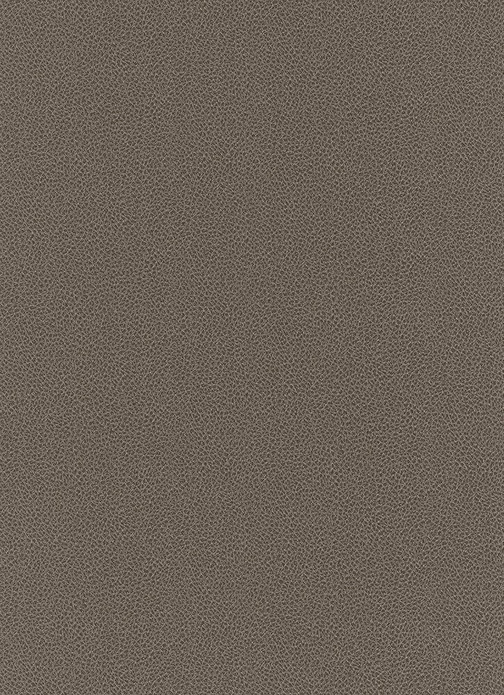 Sample Wildside Wallpaper in Brown design by BD Wall