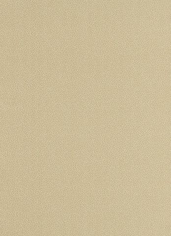 Wildside Wallpaper in Light Brown design by BD Wall