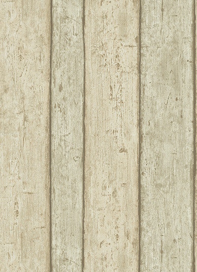Wood Wallpaper in Grey and Light Brown design by BD Wall
