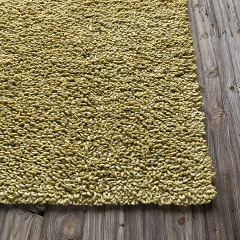 Zeal Collection Hand-Woven Area Rug in Olive Green