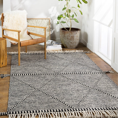 Zanafi ZNF-2301 Hand Woven Rug in Black & Cream by Surya