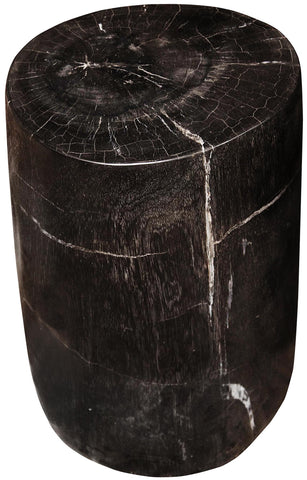 Full Polished Fossil Stool