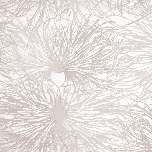 Sample Anemone Wallpaper in Alique design by Jill Malek