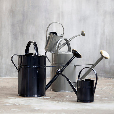 Watering Can in Various Colors