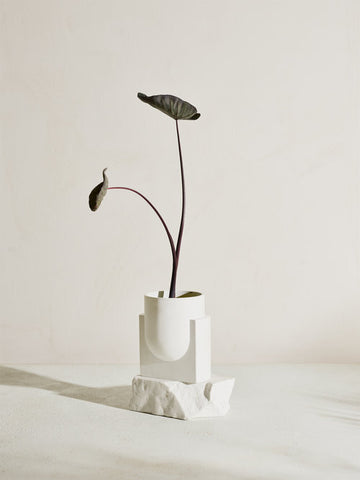 PLUTO Bonded Carrara Marble Planter design by Light + Ladder