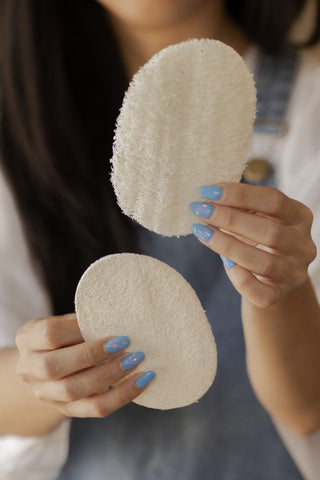 Biodegradable Eco-Sponges for Dish Washing by No Tox Life