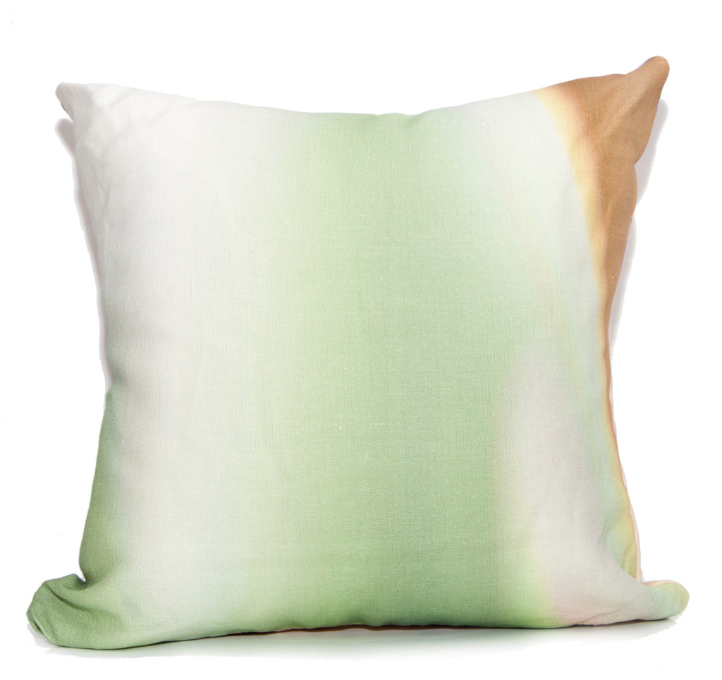 Color Fields Outdoor Throw Pillow by elise flashman