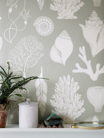 Katie Scott Wallpaper in Shells Aqua by Ferm Living