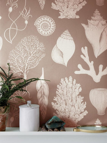 Katie Scott Wallpaper in Shells Rose