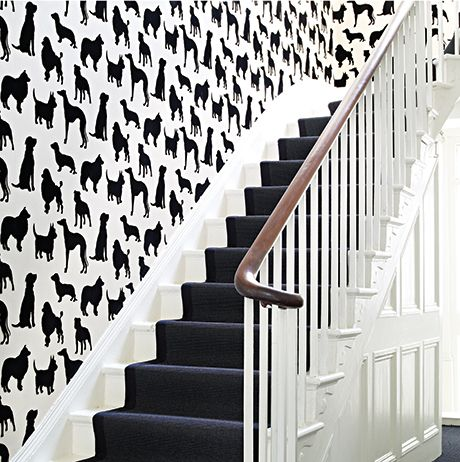 Best In Show Wallpaper in black from the Walk In The Park Collection by Osborne & Little