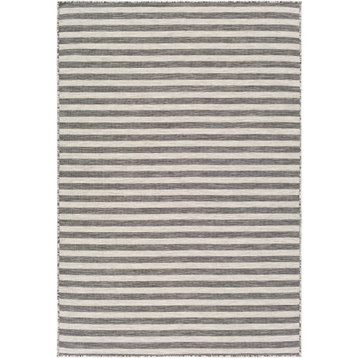 Pasadena Indoor / Outdoor Rug