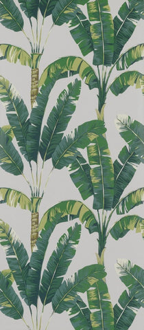 Sample Palmaria Wallpaper in green from the Manarola Collection by Osborne & Little